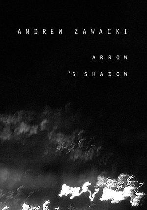 Arrow's Shadow by Andrew Zawacki